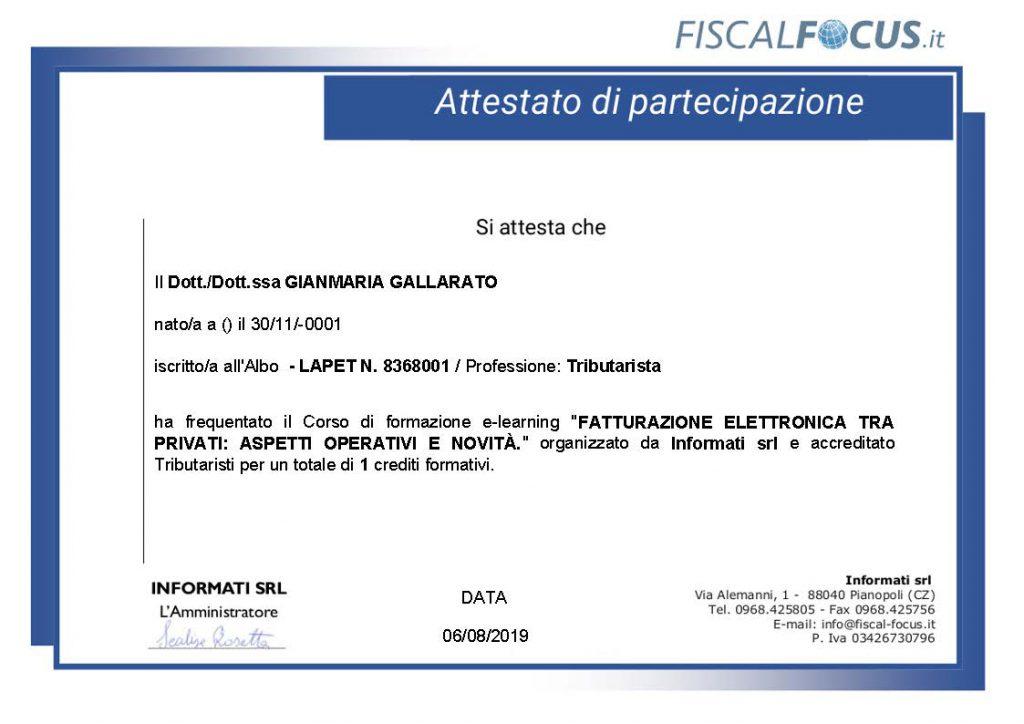 CV Gallarato Gianmaria 2