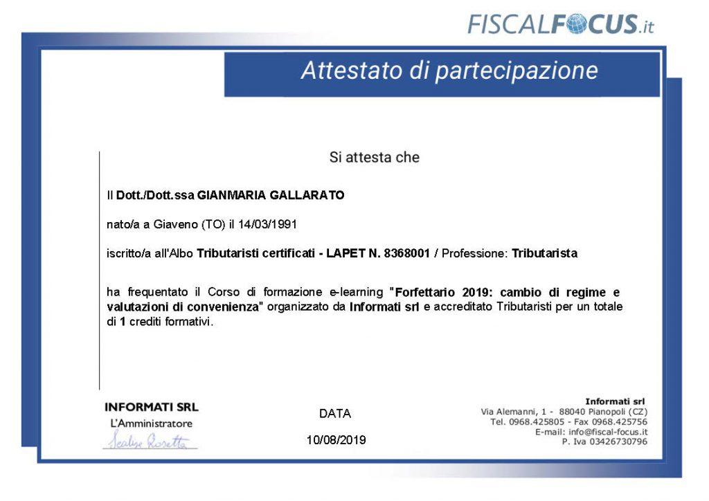CV Gallarato Gianmaria 5