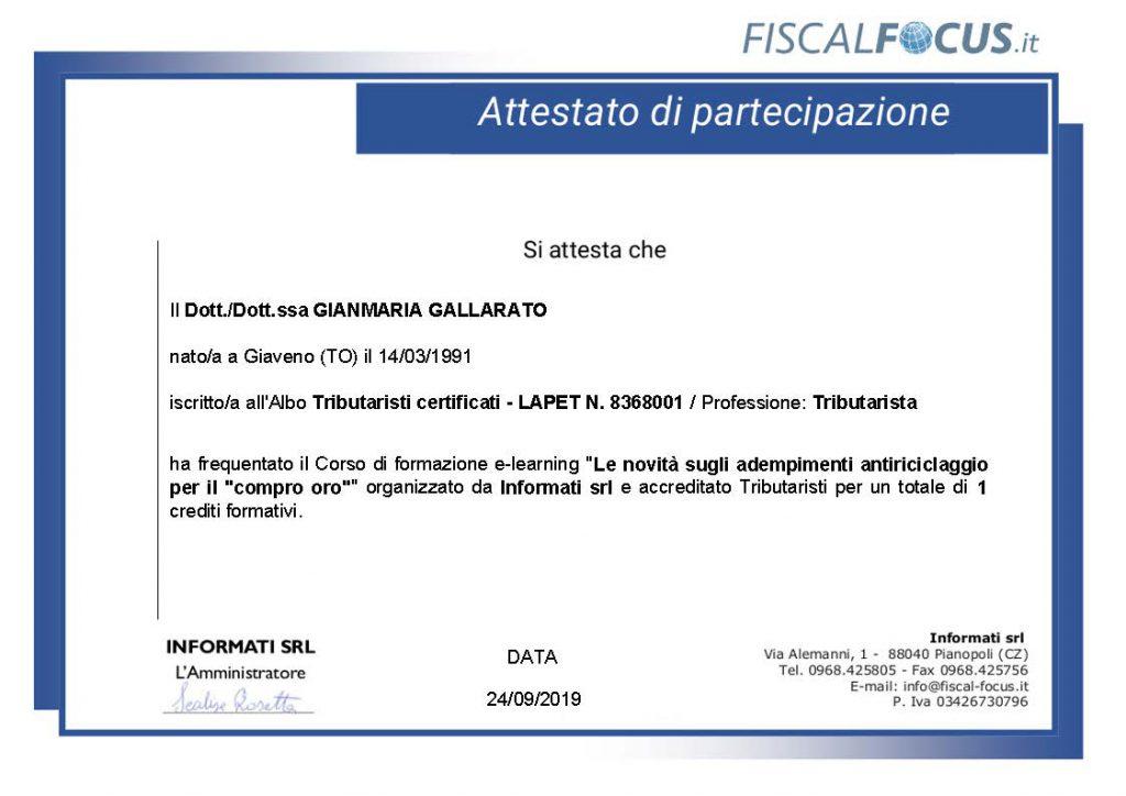 CV Gallarato Gianmaria 8